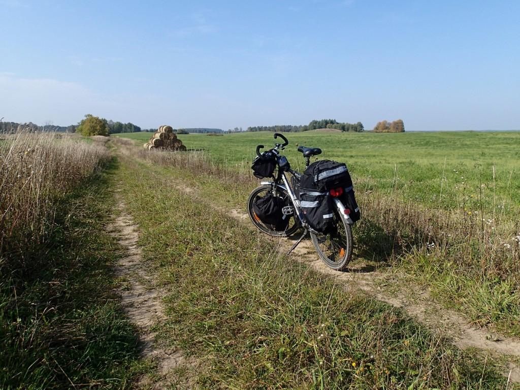 Przez pola i łąki... :)