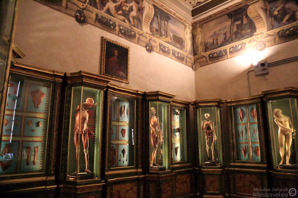 Wystawa poświęcona anatomii ciała ludzkiego. Ale zwróćcie uwagę na freski na ścianach.