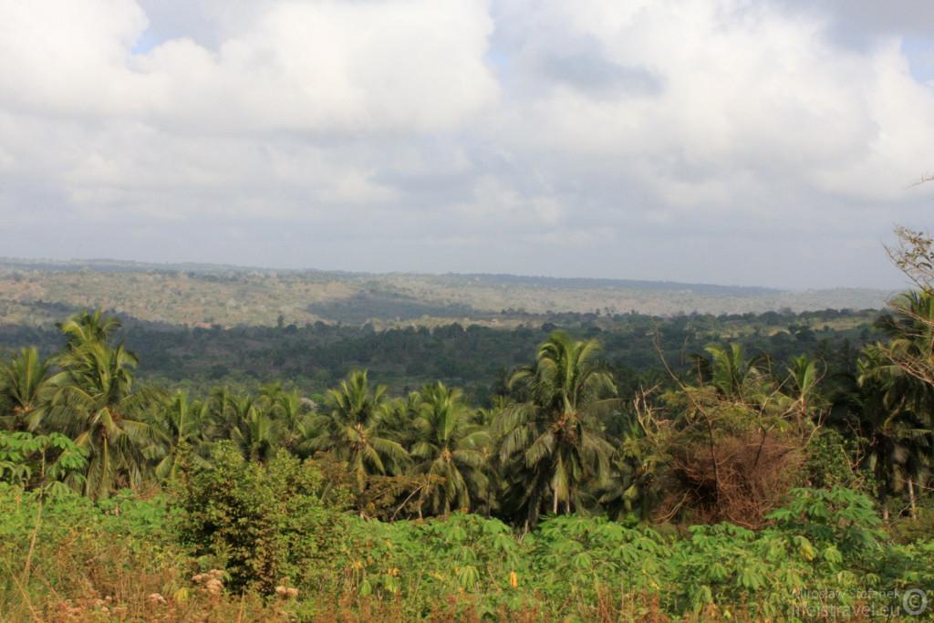 Droga do Parku Narodowego Tsavo.