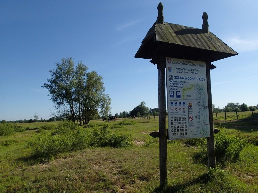 W okolicach Białaczowa.