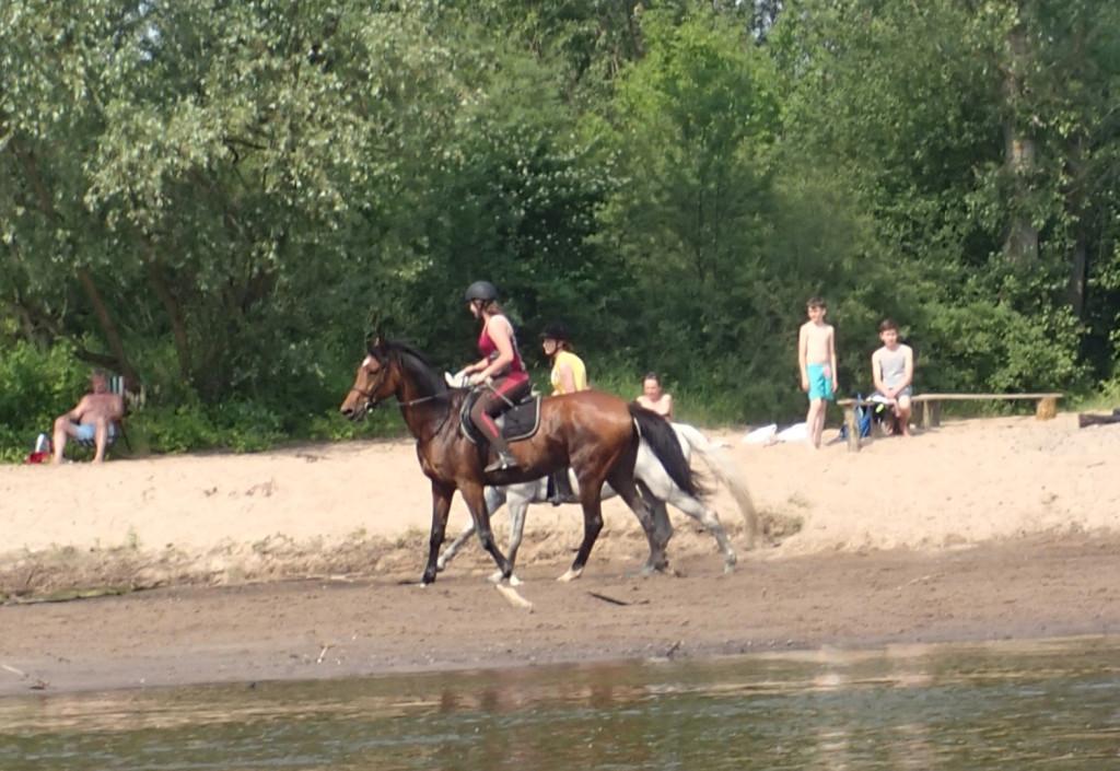 Ujeżdżanie koni na plaży.