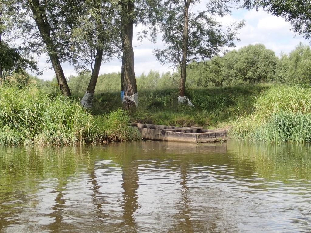 lokalna łódka - pychówka