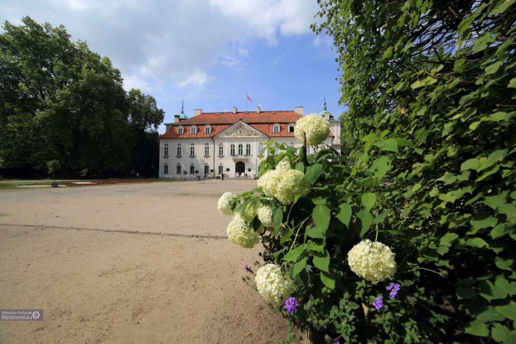 pałac od zaplecza
