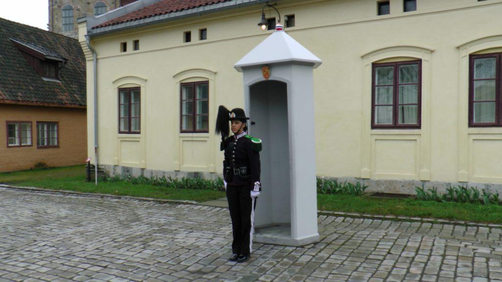 Jeden z zamkowych żołnierzy :)